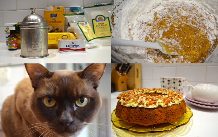 """Burmese cat"" ""Coffee pecan Bundt cake, Gluten free"" ""Clandestine Cake Club Perth"" ""desserts"" Cakes"" ""baking"" ""gluten free"" ""perth"" ""fructose malabsorption"" ""Chompchomp"" ""perth food blog"" ""recipe blog"" ""gluten free blog"" ""Perth Restaurant Reviews"""
