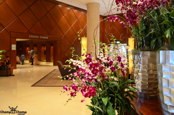 """orchids"" ""lobby"" ""Perth Restaurant Reviews"" ""food photos"" ""Perth food blog"" ""food blog"" ""Chompchomp"" ""Gluten free"" ""Fructose malabsorption"" ""Singapore Food blog"" ""Singapore travel blog"" ""asian travel blog"" ""Fairmont Hotel Singapore"" ""Singapore accommodation"" ""Fairmont"" ""Singapore wedding"""