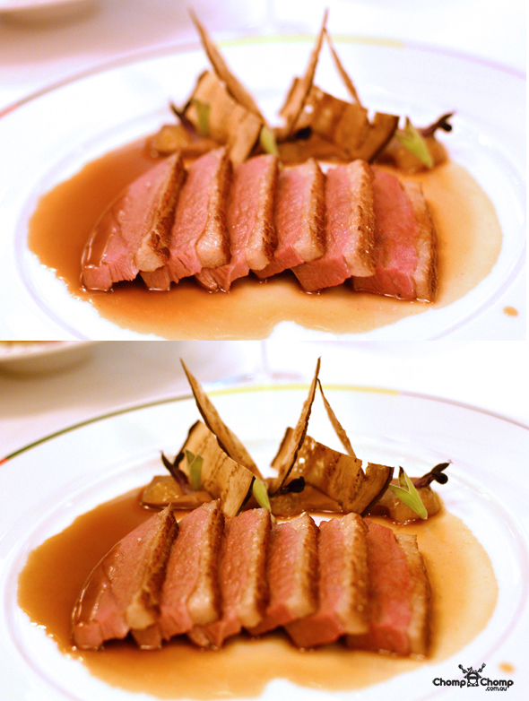 """pan seared duck breast"" ""eggplant gianduja sauce"" ""au poivre"" ""chocolate sauce"" ""sous-vide"" ""duck"" ""Perth Restaurant Reviews"" ""food photos"" ""Perth food blog"" ""food blog"" ""Chompchomp"" ""Gluten free"" ""Fructose malabsorption"" ""Singapore Food blog"" ""Singapore travel blog"" ""asian travel blog"" ""Fairmont Hotel Singapore"" ""Singapore accommodation"" ""Fairmont"" ""Singapore wedding"" ""Marina Bay Sands"" ""MBS"" ""Guy Savoy"" ""celebrity restaurant"" ""Fine dining"" ""French"" ""casino"""