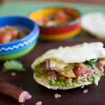 Vegan fructose friendly tortillas inspired by Rebecca Kerr
