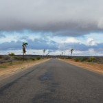 Getting to the Gascoyne: Our Flight from Perth to Exmouth and a drive to Carnarvon